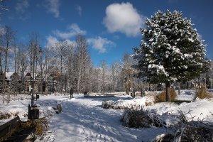 Bajkowa zima w parku